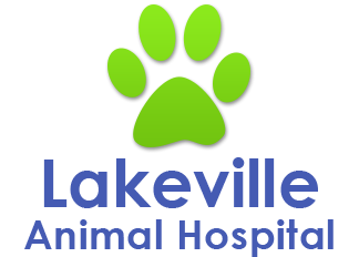 Lakeville Animal Hospital